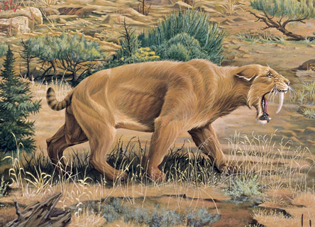 http://www.joevenusartist.com/Images/Saber-Tooth-Cat.jpg
